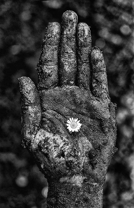 flower_hand - pinterest